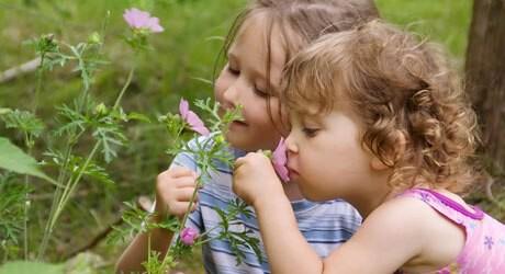Ein Insektenstich bei Kleinkind oder Baby ist meist ungefährlich