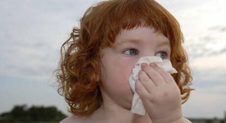 nasenbluten baby