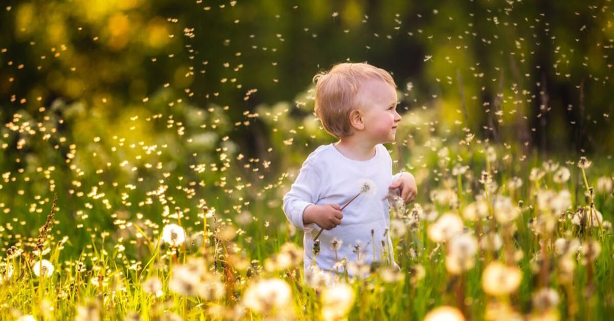 Baby und Insektenbisse
