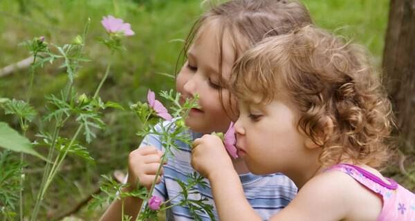 Geschwister bewegen sich oft zwischen Liebe und Rivalität