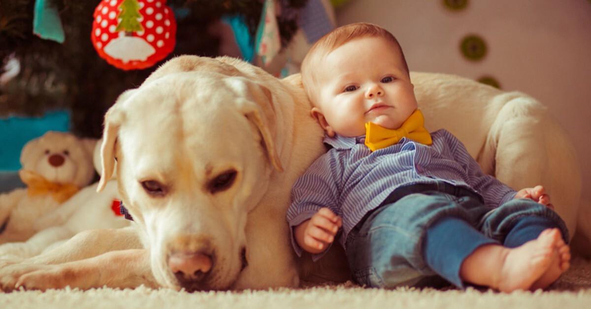 Kind und Tier