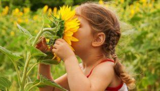 Gefährliche Pflanzen für Kinder