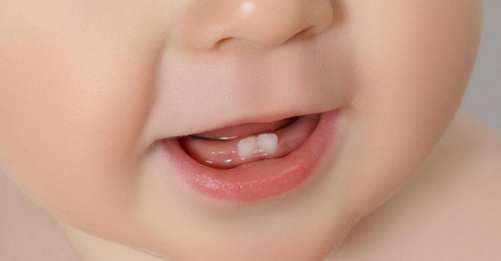 Babys erste Zähne