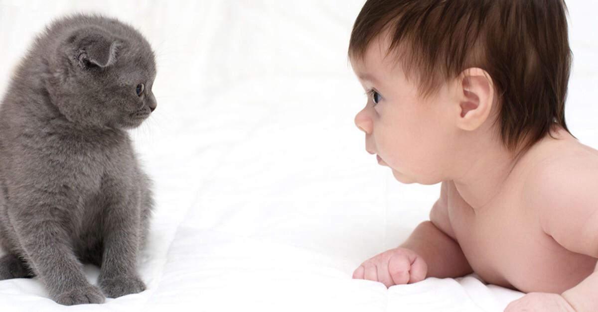 Kind und Katze