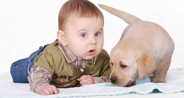 Tipps für Eltern die mit Kind oder Baby und Hund in Urlaub fahren wollen