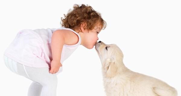 Hund und kleines Kind oder Baby : Auf welche Signale man jetzt achten sollte