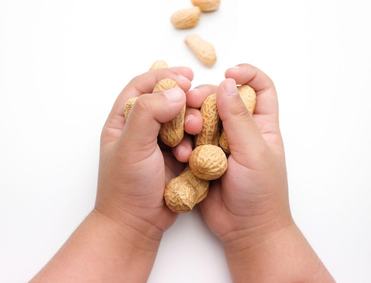 Kleinkind hält Erdnüsse