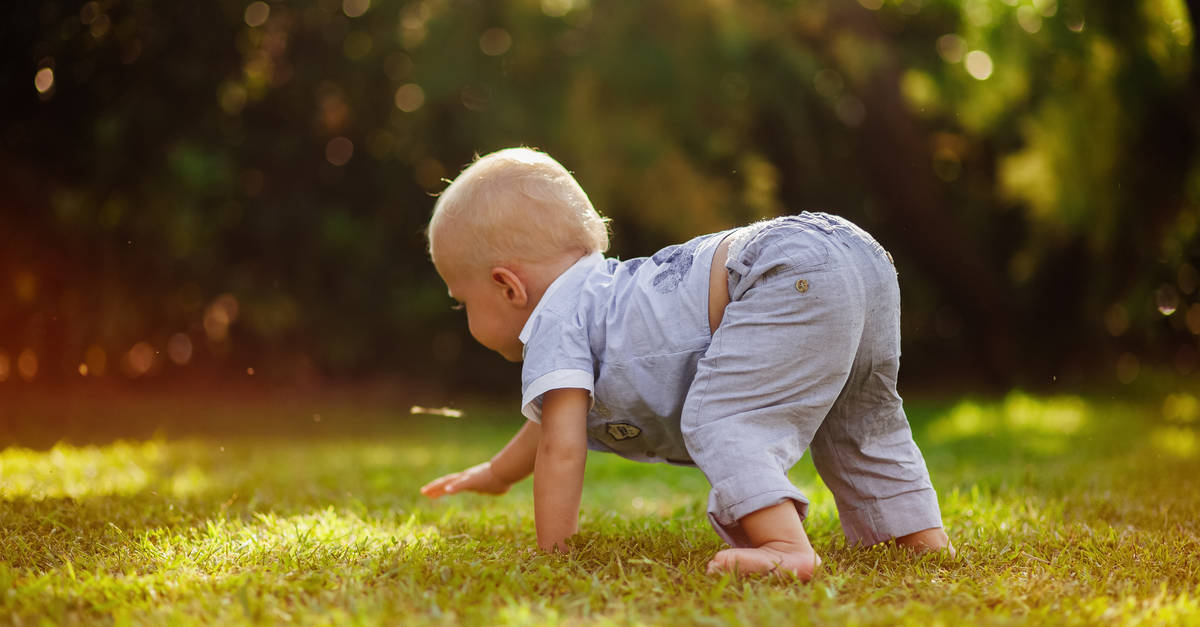 Baby krabbelt in der Wiese
