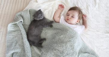 babys und haustiere