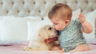 Baby und Hund – eine tierisch gute Freundschaft